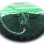 Penelitian dan Pengembangan Kultur Jaringan Rumput Laut – 4