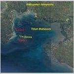 Penyusunan, Pembentukan Serta Pendampingan Unit Bisnis Pengelolaan Kebun Bibit Rumput Laut