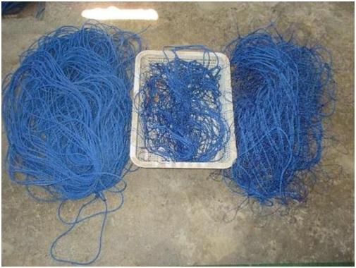 Gambar 3. Sebahagian tali bentangan budidaya untuk Lokasi-2