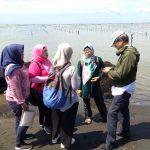 Kunjungan ke Lokasi Budidaya Kabupaten Jeneponto
